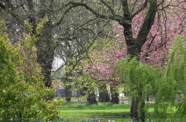 Whitworth Park, Manchester