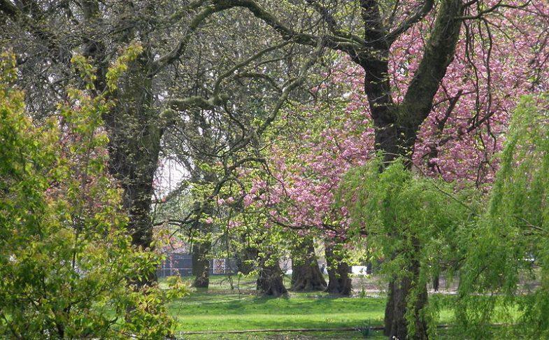 Whitworth Park, Manchester