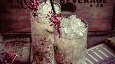 Photo of two botanical cocktails