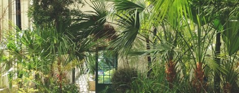 Photo of the interior of the glass pavilion, with many exotic plants