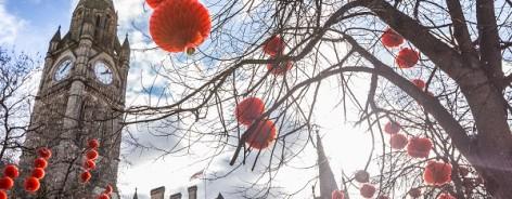Photo of albert square with lanterns