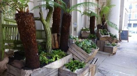 Lost gardens of manchester ©Clement Neveu