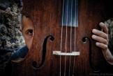 Photo of Giovanni Sollima behind cello