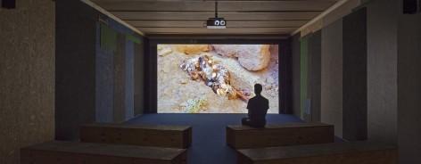 Man watching an art film