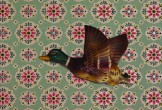 A flying duck on paisley wallpaper
