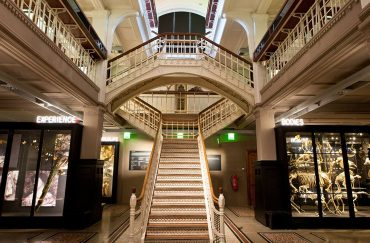 Manchester Museum Tours at Manchester Museum