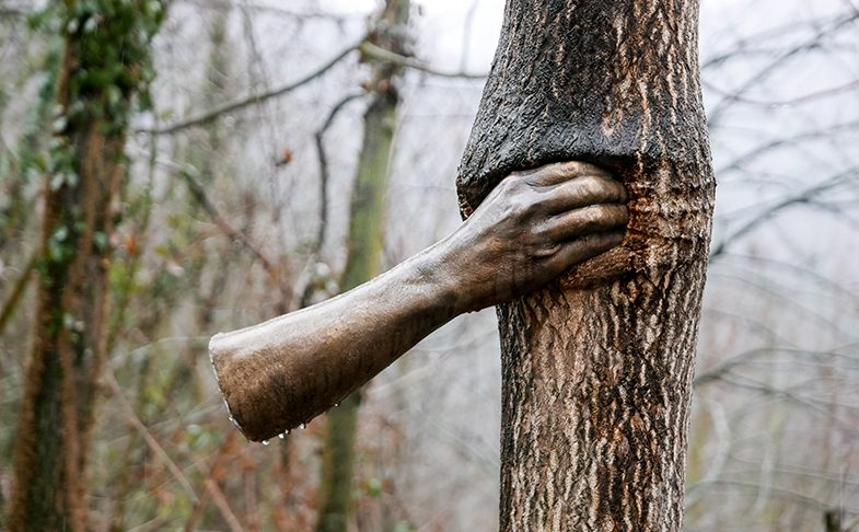 Giuseppe Penone, Continuera a Crescere Tranne che in quel Punto. 1968-2003. Courtesy the-artist. Photo © Archivo Penone. Yorkshire Sculpture Park (YSP)