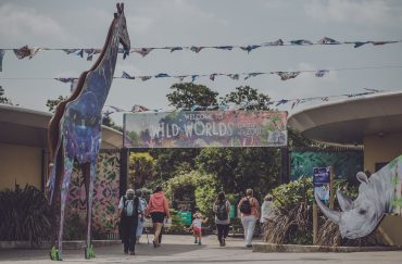 Wild Worlds festival at Chester Zoo