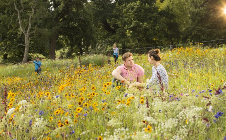 trentham gardens stoke on trent