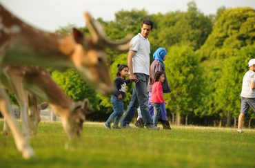Deer Park at Dunham Massey