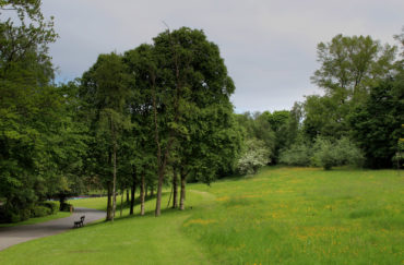 Thompson Park in Burnley
