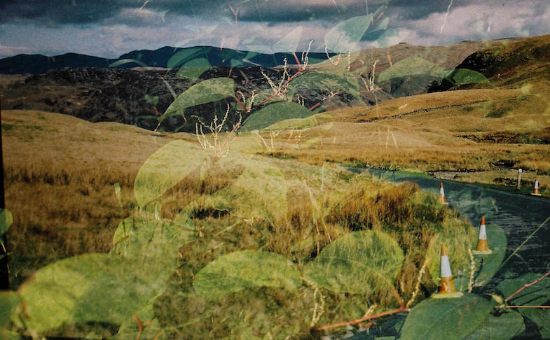 Julia Parks – Under the Northern Sky at Signal Film & Media, Barrow-in-Furness