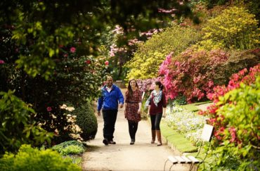 Summer gardens at Quarry Bank