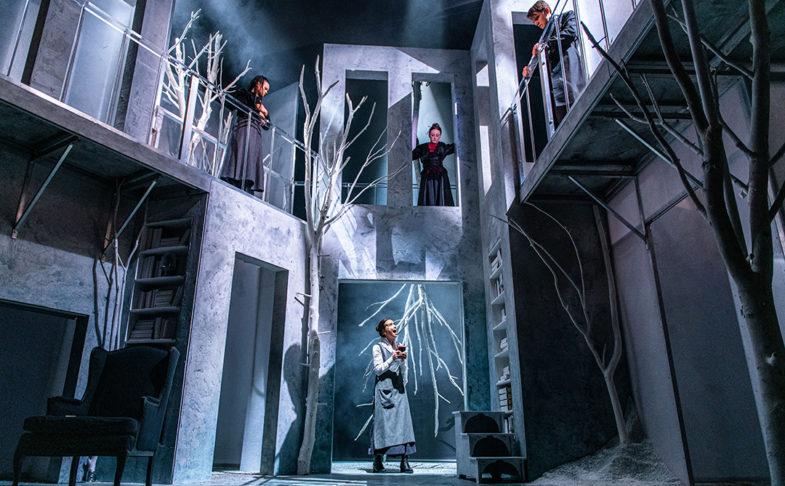 Frankenstein at Liverpool Playhouse. Photo credit: Tommy Ga-Ken Wan