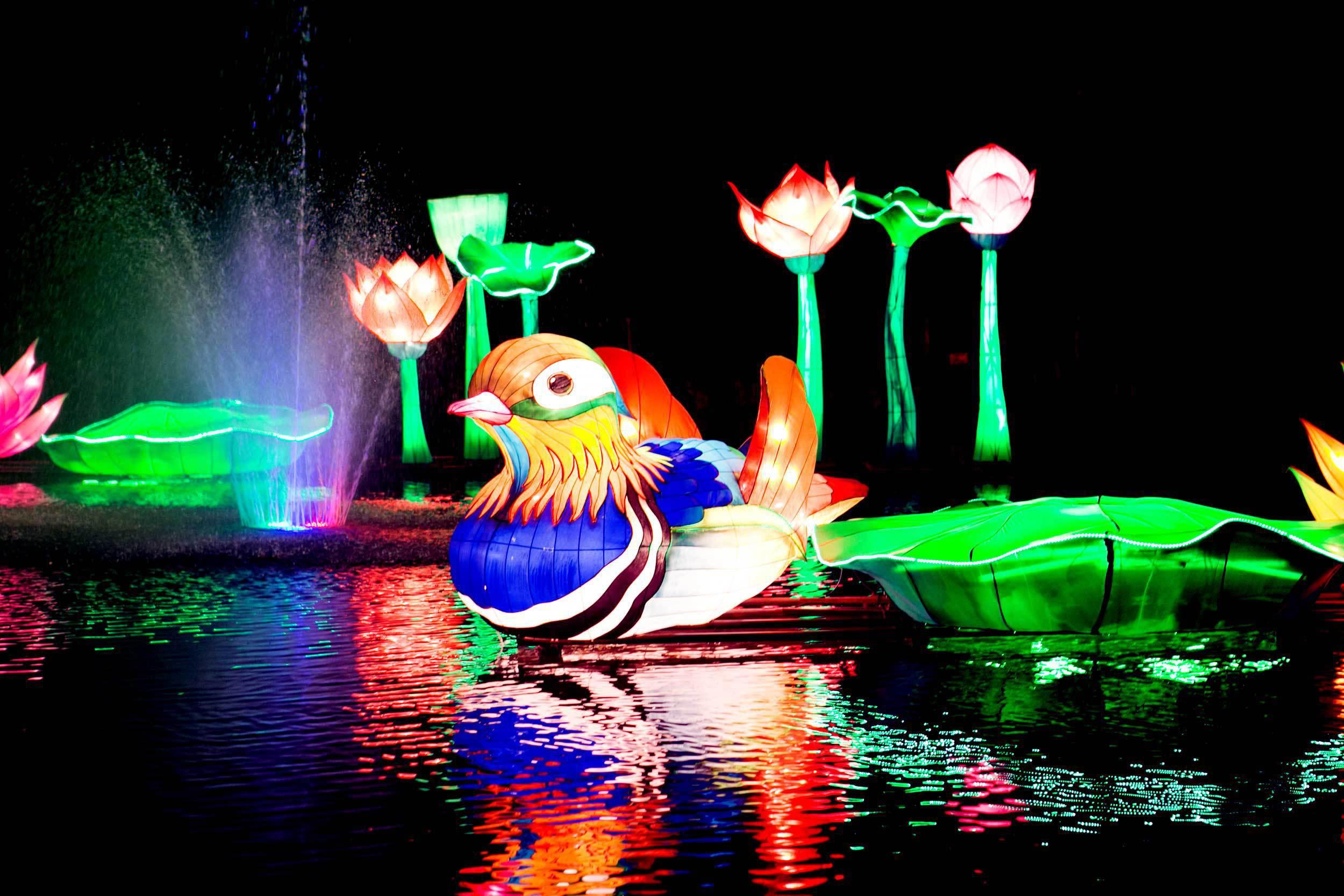 Art installation at Lightopia of a bird on water.