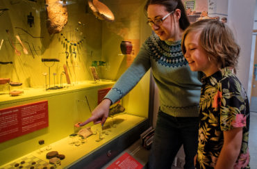Adult and child looking at part of the collections