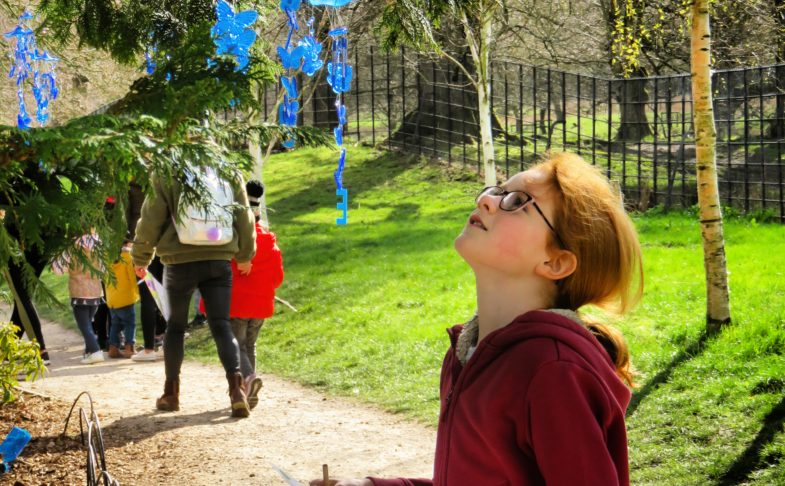 Boy looking up at a tree in the easter egg hunt
