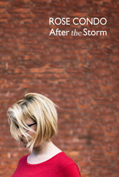 Rose Condo - After the Storm book cover