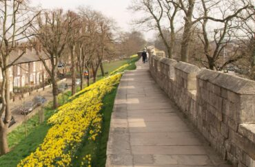 York City Walls / Wall Trail