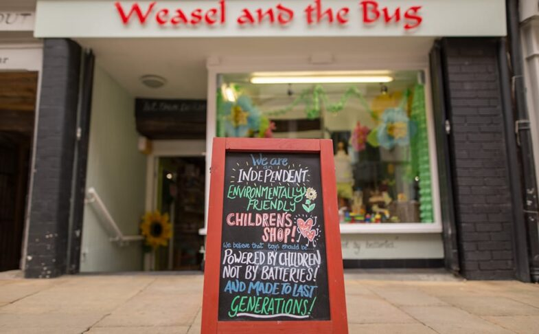Weasel and the Bug, Chester
