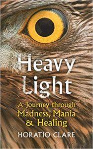 Heavy Light cover