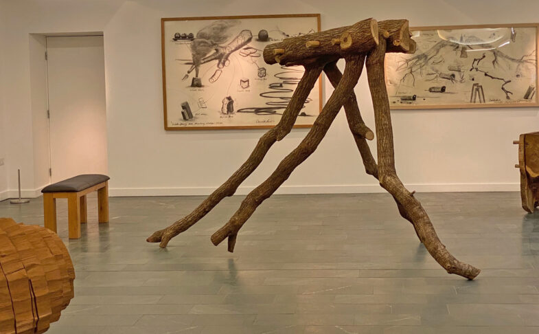 David Nash, Running Table, Grizedale, 2021