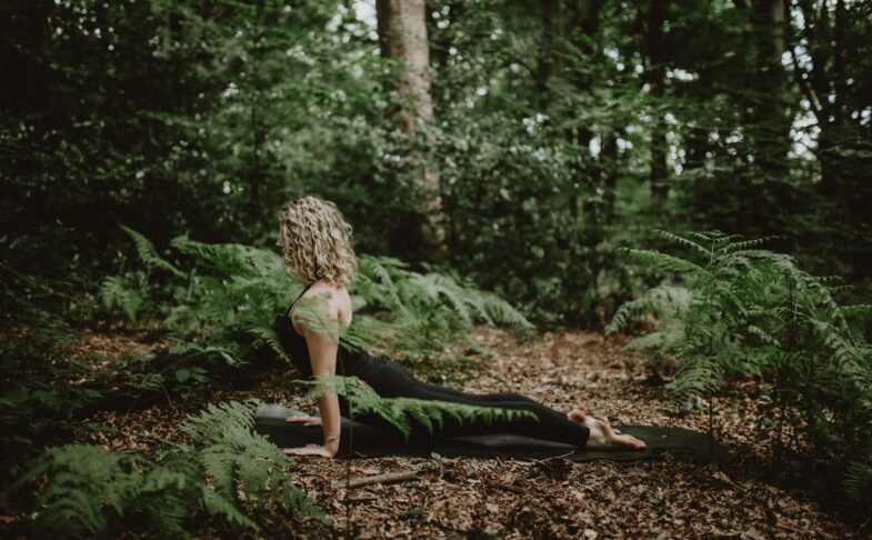 yoga fundamentals